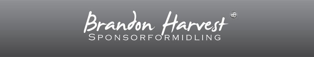 Brandon Harvest - Online marketing and banner design